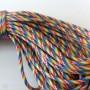 Paracord 550 Rainbow